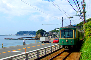 Enoshima and Kamakura Sightseeing Guide