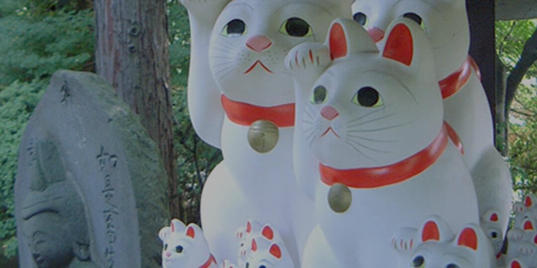 新宿周邊散步秘籍