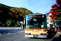 The Tanzawa-Oyama Freepass covers an extensive transportation network for visitors who want to sightsee, view the autumn leaves or go hiking.