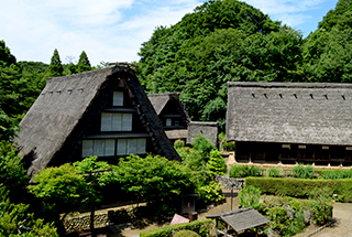 Japan Open-air Folk House Museum of Kawasaki