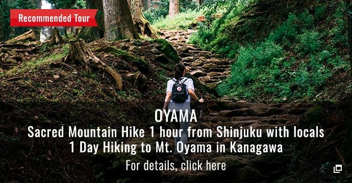 OYAMA Sacred Mountain Hike 1 hour from Shinjuku with locals 1 Day Hiking to Mt. Oyama in Kanagawa