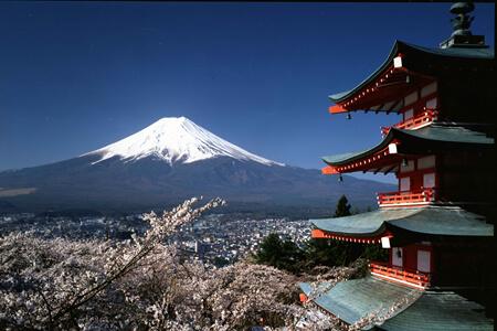 Arakura-yama Sengen Park Cherry Blossom Matsuri (festival)