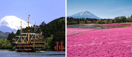 富士箱根周遊方案