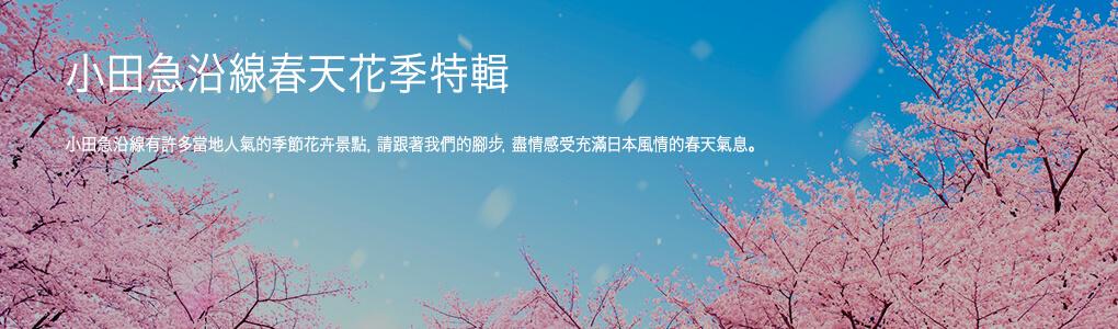 小田急沿線  春天花季特輯