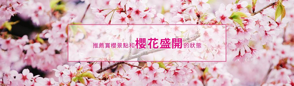 推薦賞櫻景點和櫻花盛開的狀態