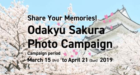 Odakyu Sakura Photo Campaign