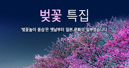 벚꽃 특집