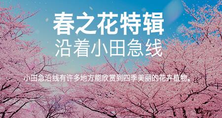 小田急沿線春之花特輯