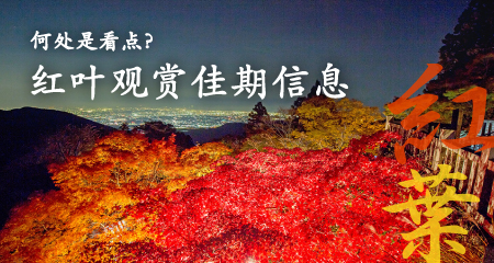 楓葉狀況地圖