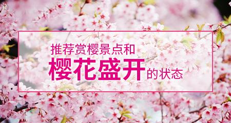 推荐赏樱景点和樱花盛开的状态