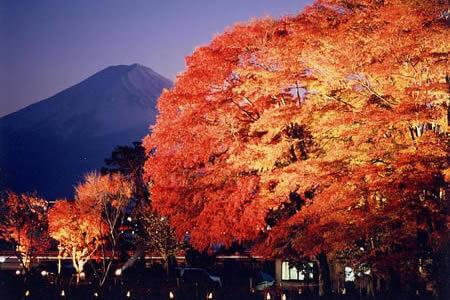 Fuji Kawaguchiko Autumn Leaves Matsuri (festival)