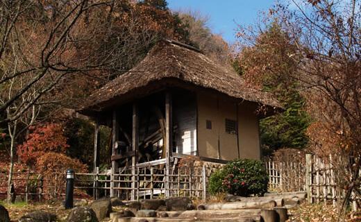 이쿠타 녹지/일본민가원
