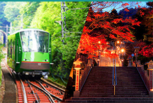 Freepass Tanzawa-Oyama