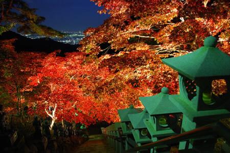 Couleurs de l'automne d'Oyama